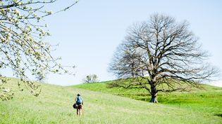 Un homme marche dans un champ, en Haute-Garonne, le 9 avril 2020. (LILIAN CAZABET / HANS LUCAS / AFP)