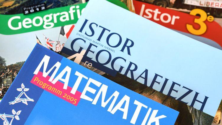 Des manuels scolaires en langue bretonne, dans une école Diwan du Relecq-Kerhuon (Finistère). (FRED TANNEAU / AFP)