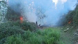 Un incendie sévit en Corse mardi 4 février. L'île de beauté est en alerte orange aux vents violents depuis la matinée. (France 3)