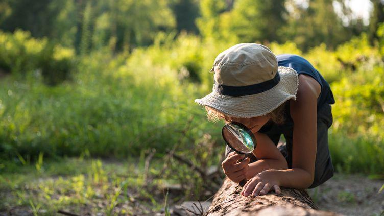 Une enfant observe les insectes dan la forêt au travers d'une loupe. (MONIKA HALINOWSKA / MOMENT RF / GETTY IMAGES)