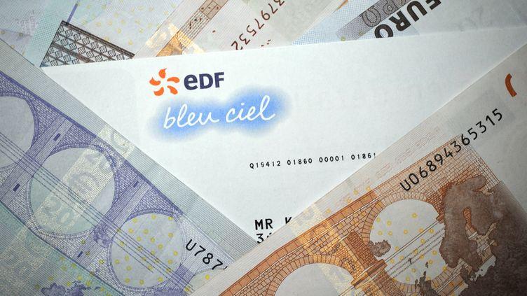 La facture moyenne d'un ménage français va s'alourdir de 50% d'ici 2020 pour atteindre 1 307 euros par an, selon un rapport de sénateurs rendu le 18 juillet 2012. (JEAN-PHILIPPE KSIAZEK / AFP)