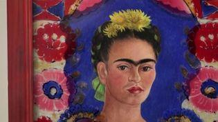 Les battantes : Frida Kahlo, la vie d'une artiste révolutionnaire (France 2)