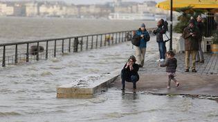 La Garonne est sortie de son lit à Bordeaux, le 13 février 2016. (SALINIER QUENTIN / MAXPPP)