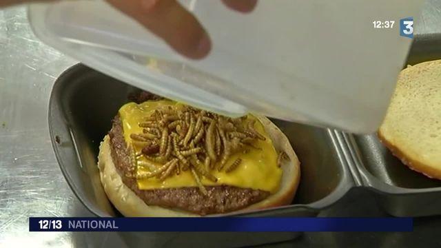Le burger aux insectes retiré de la vente