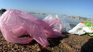 Sacs plastique sur une plage (FRANZ CHAVAROCHE-  NICE MATIN / MAXPPP)