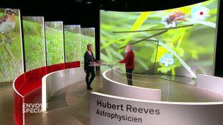 """""""La disparition des vers de terre est aussi inquiétante que la fonte des glaces"""", explique Hubert Reeves dans """"Envoyé spécial"""" (FRANCE 2 / FRANCETV INFO)"""