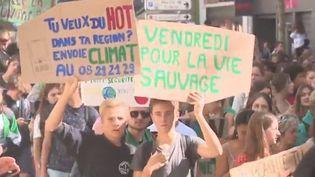 Vendredi 20 septembre, adultes et jeunes se sont rassemblés pour défendre le climat à Paris et en région. (FRANCE 3)