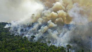 Une vue aérienne de la forêt amazonienne en feu, au sud de Novo Progresso, dans l'Etat de Para au Brésil, le 16 août 2020. (CARL DE SOUZA / AFP)