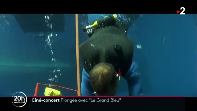 """Ciné-concert : regardez le film """"Le Grand Bleu"""" avec un orchestre"""