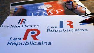 Les adhérents UMP sont appelés à se prononcer, les 28 et 29 mai 2015, sur la nouvelle appellation prévue pour le parti Les Républicains. (  MAXPPP)