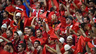 Des supporters albanais dans les tribunes du stade Bollaert, à Lens (Pas-de-Calais), avant leur match contre la Suisse, le 11 juin 2016. (PHILIPPE HUGUEN / AFP)