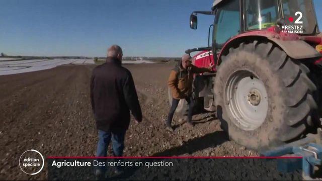 Agriculture : des renforts en questions