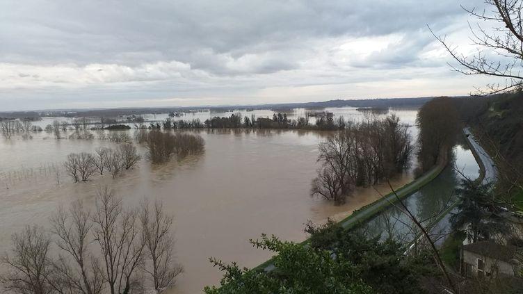 La Garonne à Meilhan-sur-Garonne (Lot-et-Garonne), entre La Réole et Marmande, le 4 février 2021. (MATHIEU MEUNIER)