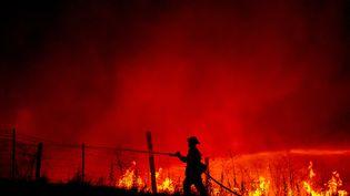 Un pompier lutte contre les flammes près de Mariposa, en Californie (Etats-Unis), le 18 juillet 2017. (JOSH EDELSON / AFP)