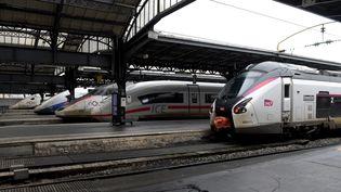 Des trains à quai à la gare de l'Est, à Paris, le 11 janvier 2019. (ERIC PIERMONT / AFP)