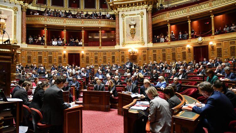 Une séance de questions au gouvernement au Sénat, le 21 mars 2019. (DANIEL PIER / NURPHOTO / AFP)