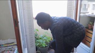 """De plus en plus de Français s'intéressent au jardinage depuis le confinement. Pour ceux qui auraient moins de temps à y consacrer, des entreprises proposent même d'installer à domicile un potager bio """"clé en main"""". (CAPTURE ECRAN FRANCE 2)"""