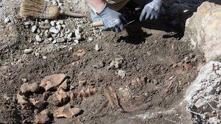 Découverte d'un squelette par un archéologue. (AFP)