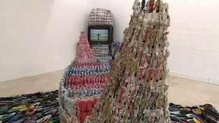 La thématique de l'esclavage représentée par de nombreux artistes à la Villa Arson  (France3/Culturebox /capture d'écran)