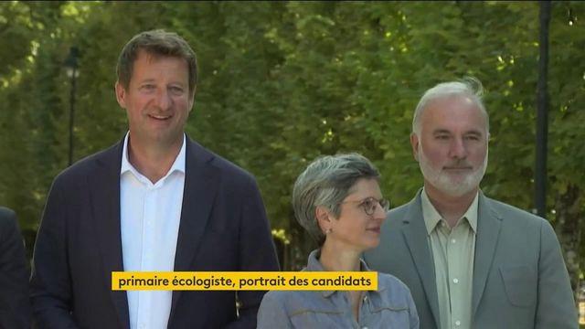 Présidentielle 2022 : les candidats à la primaire écologiste