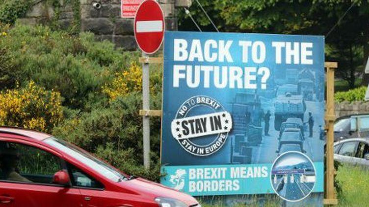 """""""Brexit signifie frontières"""": une affiche pro-UE du parti rébublicain irlandais, le Sinn Féin, posée à Newry (Irlande du Nord) (PAUL FAITH / AFP)"""