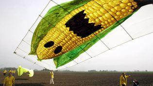 L'Agence européenne de sécurité des aliments a rejeté les conclusions d'une enquête française sur la toxicité d'un maïs OGM et de l'herbicide Roundup, le 28 novembre 2012. (MICHAEL KAPPELER / DDP / AFP)