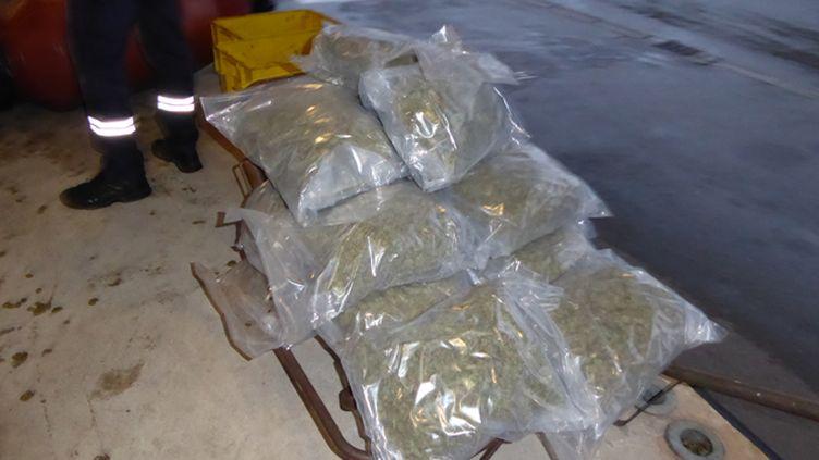(Les douaniers d'Hendaye ont découvert plus d'une tonne de cannabis dissimulée dans des fûts d'olive  © Douane française)