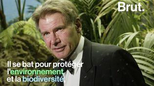 VIDEO. De charpentier à star d'Hollywood… La vie d'Harrison Ford (BRUT)