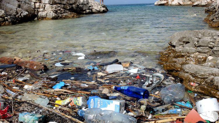 Des déchets plastiques sur une crique de l'île de croate de Lastovo, en septembre 2014. (ROLF HAID / DPA / AFP)