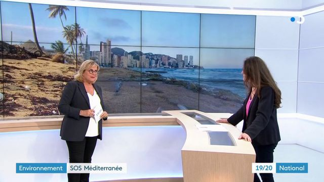 Environnement : WWF alerte sur la pollution liée au plastique dans la mer Méditerranée