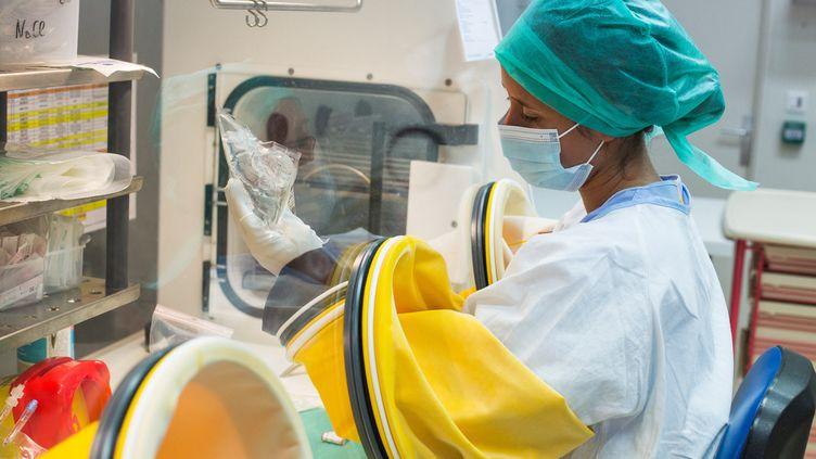 Préparation d'un traitement d'immunothérapie au CHU de Bordeaux le 15 septembre 2020. (BURGER / PHANIE)