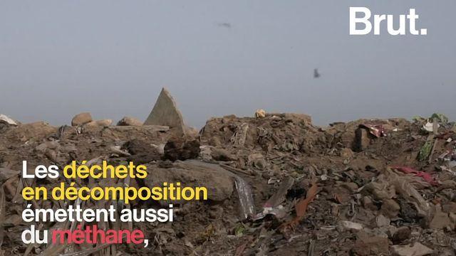 La décharge à ciel ouvert de Ghazipur, à Delhi, offre un décor des plus alarmants. Les déchets s'accumulent sans cesse et mettent en péril la santé des habitants du quartier.