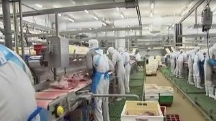 Covid-19 : un abattoir offre 200 euros à ses salariés vaccinés. (FRANCE 2)