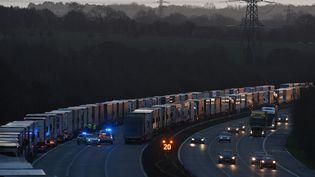 Des poids-lourds sont à l'arrêt sur l'autoroute menant au port de Douvres (Royaume-Uni), le 22 décembre 2020, en raison de la suspension des déplacements liée àune nouvelle souche du coronavirus. (JUSTIN TALLIS / AFP)