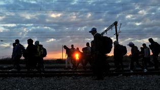 Des migrants marchent au bord d'une voie ferrée, près d'Idomeni, dans le nord de la Grèce,vers la frontière avec la Macédoine,le 14 septembre 2015. (AFP)