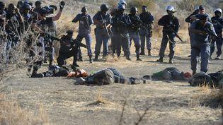 Des policiers anti-émeute encerclent des mineurs grévistes sur lesquels ils ont tiré, le 16 août 2012 à Marikana (Afrique du Sud). ( AFP)