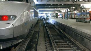 Un TGV en gare de Paris-Montparnasse, le 18 mars 2003. (MARTIN BUREAU / AFP)