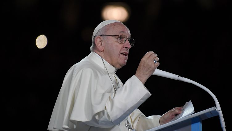 Le pape François s'adresse à la foule dans le stade de Croke Park, à Dublin, le 25 août 2018. (TIZIANA FABI / AFP)