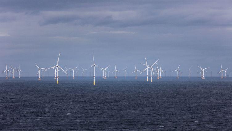Un parc d'éoliennes en mer, à Ostende, en Belgique, le 30 septembre 2021. (KENZO TRIBOUILLARD / AFP)