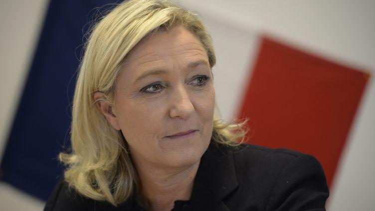 Marine Le Pen, lors d'une visite àChâlons-en-Champagne(Marne), le 11 novembre 2014. (MAXPPP)