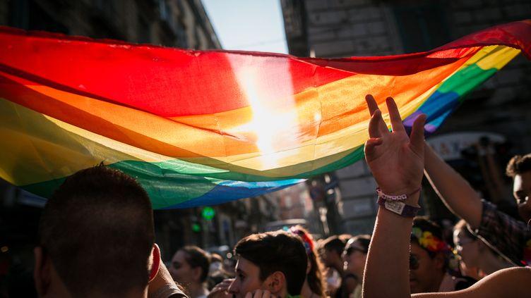 Un drapeau LGBT est brandi lors de la Marche des fiertés, à Naples, en italie, le 11 juillet 2015. (MICHELE AMORUSO / CROWDSPARK / AFP)