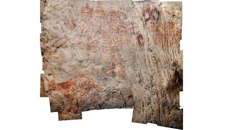 Peinture d'un animal dans une grotte d'Asie, datée d'au moins 40.000 ans, fournie par la revue Nature le 7 novembre 2018  (Luc-Henri FAGE / KALIMANTHROPE.COM / NATURE PUBLISHING GROUP / AFP)