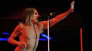 Iggy Pop sur scène  (GUILLAUME SOUVANT / AFP)