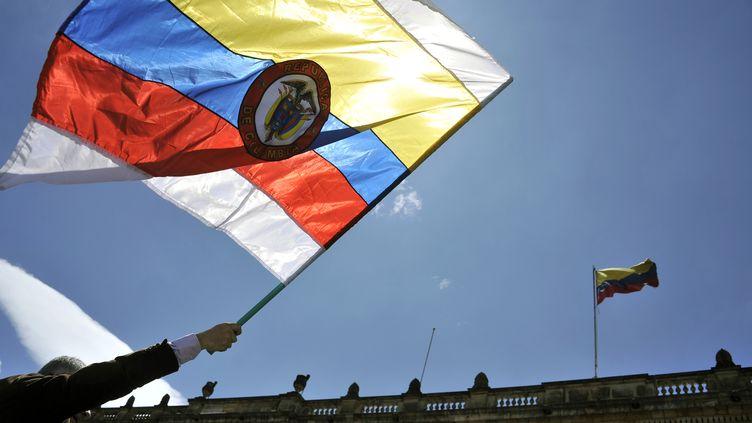 Un homme brandit un drapeau colombien devant le Congrès à Bogota (Colombie), le 30 novembre 2016. (GUILLERMO LEGARIA / AFP)