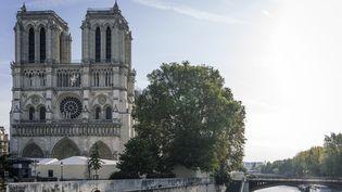 La cathédrale Notre-Dame de Paris, le 14 octobre 2019 (DENIS MEYER / HANS LUCAS)