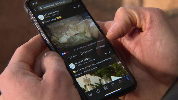 La chambre d'agriculture de Côte-d'Or propose aux exploitants des formations à l'utilisation des réseaux sociaux. (FRANCE 3 / CAPTURE D'ECRAN)