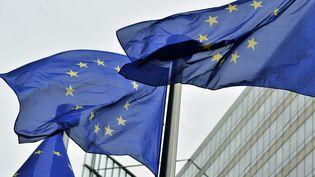 Des drapeaux européens à Bruxelles, le 21 mai 2014. (GEORGES GOBET / AFP)