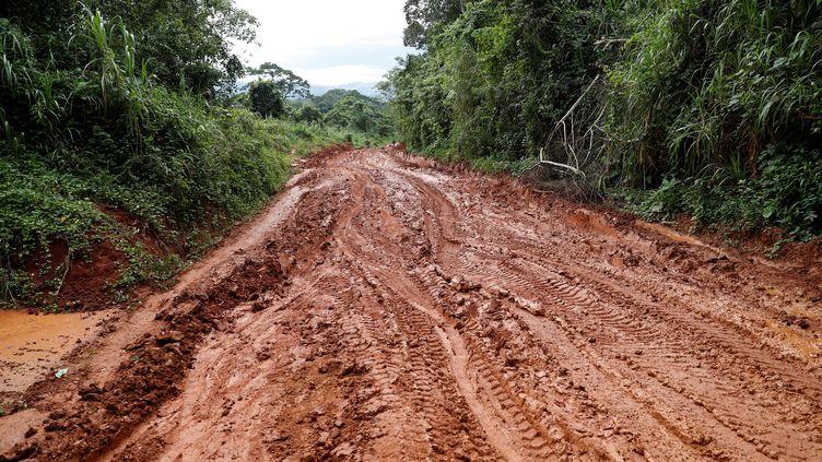 Une route près de Mobwalu, province d'Ituri, dans l'est de la RDC. Photo prise le 6 avril 2018. (REUTERS - GORAN TOMASEVIC / X90012)