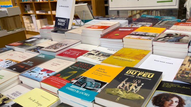 Dans une librairie à Toulouse, le 24 juillet 2021. (SANDRINE MARTY / HANS LUCAS / AFP)