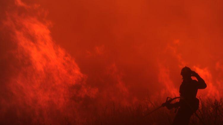 Un pompier lutte contre les flammes aux environs de La Jonquera (Espagne), le 23 juillet 2012. (LLUIS GENE / AFP)